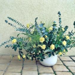 fleurs_divers_5