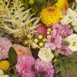 fleurs_divers_7